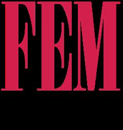 FEM Creative Agency